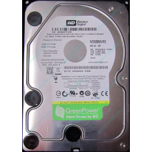 Б/У жёсткий диск 500Gb Western Digital WD5000AVVS (WD AV-GP 500 GB) 5400 rpm SATA (Балаково)